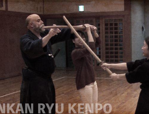 Comment apprendre le Kenjutsu?