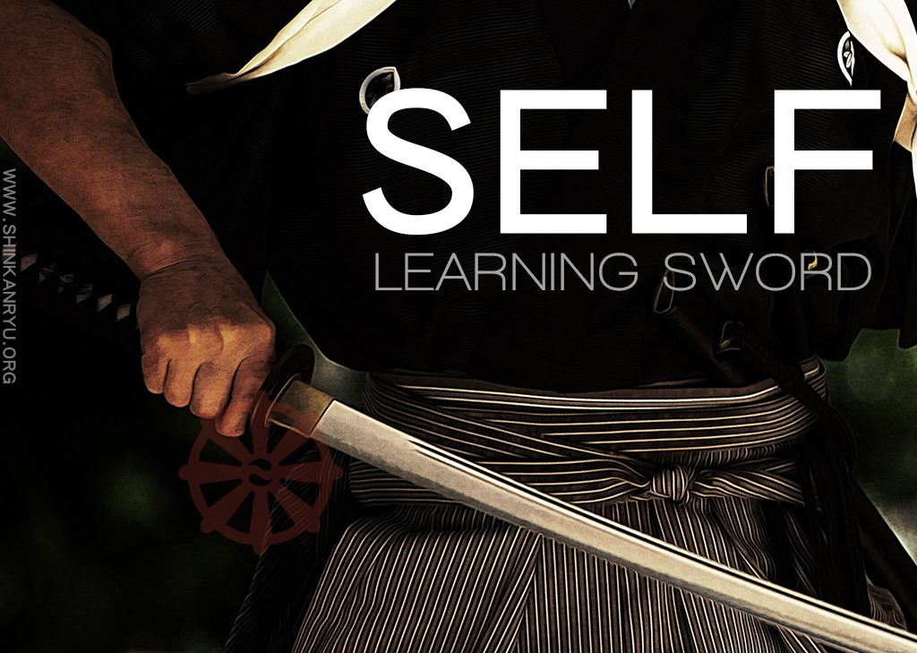 self learning sword