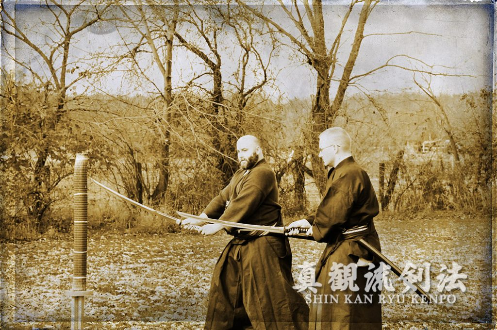 teaching sword thrust