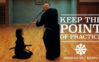 iaido points