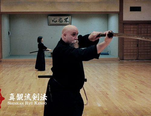 Multiple Directions In Iaido