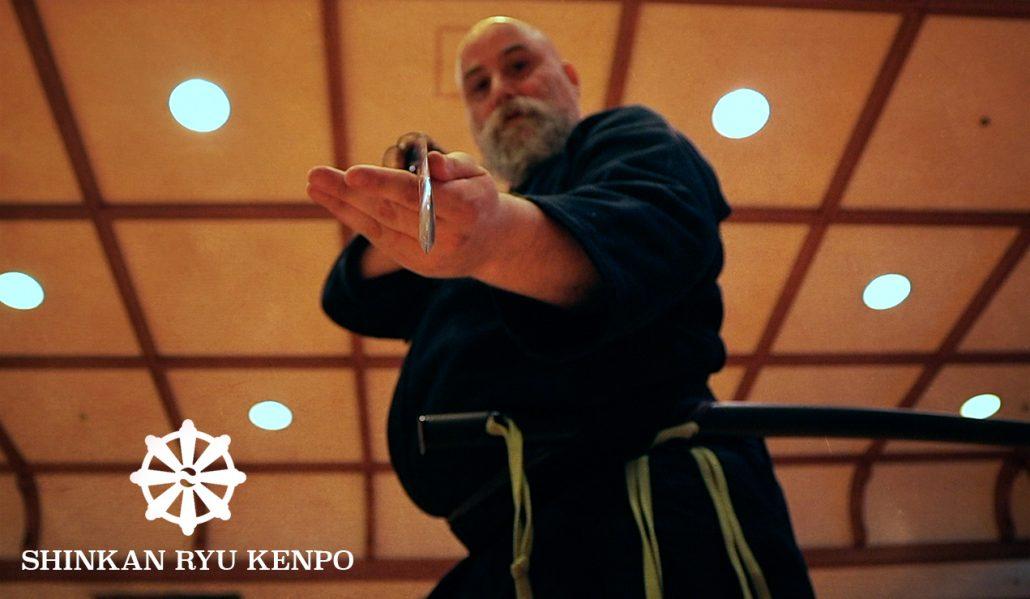 iaido sword tame seme