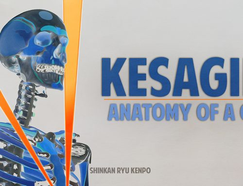 Kesagiri: Anatomy of A Sword Strike