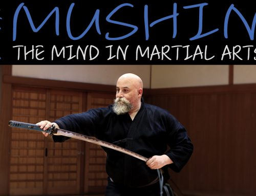 Mushin State of No Mind In Martial Arts