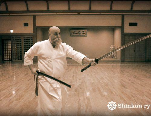 Bujutsu Thoughts