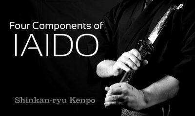 components of iaido