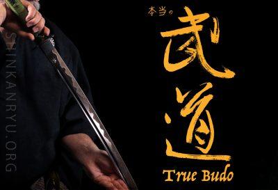 what is true budo