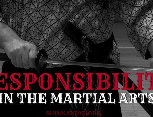 Martial Arts Responsibility