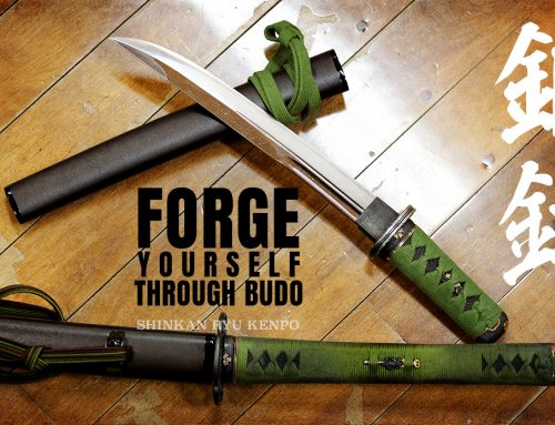 Forge Yourself Through True Budo