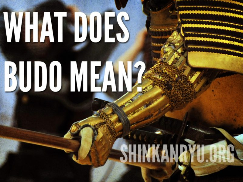 what does budo mean?
