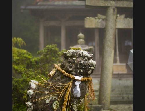 Bujutsu Centering