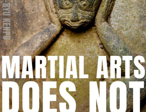 Martial Arts Doesn't Change You Into A Hero
