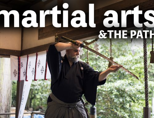 Martial Arts and The Path: Strive for the truth