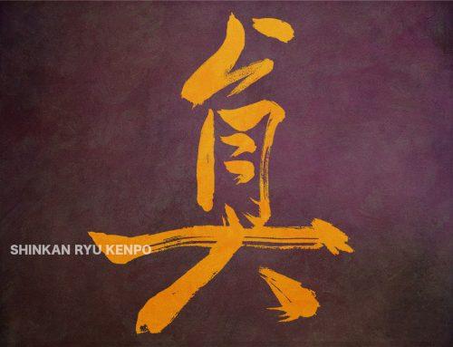 Bujutsu Truth