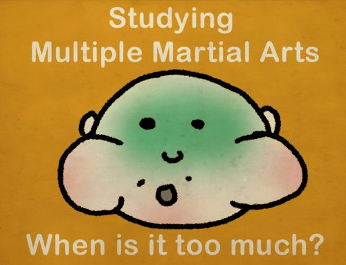 Is Studying Multiple Martial Arts Ok?