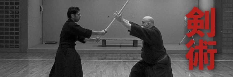 learn kenjutsu