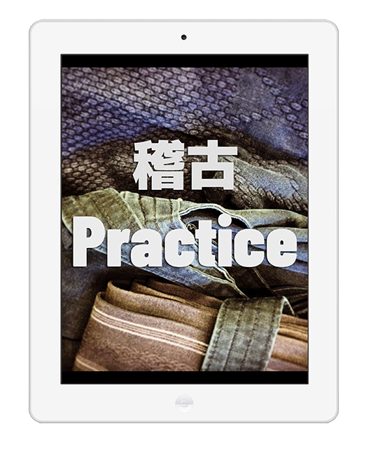 learn iaido ipad
